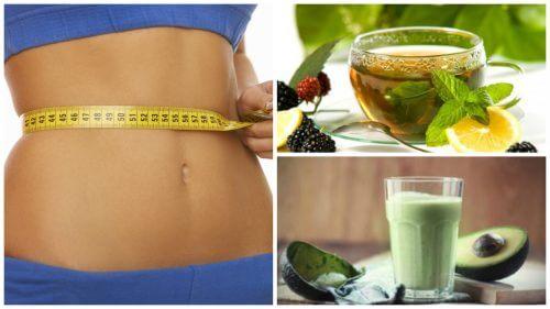 ダイエットにおすすめの緑茶の飲み方4つ