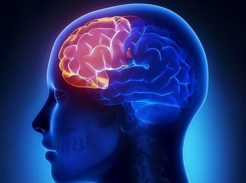 認知症予防のための4つの脳トレ