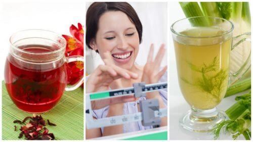 減量効果を向上させるお茶6選