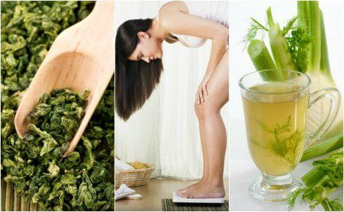 ダイエットにオススメ!/減量促進効果のある薬用植物5選