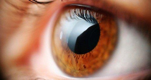 私たちの目が語る体の健康状態5選
