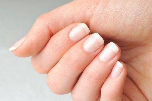 爪半月からわかる私たちの健康状態