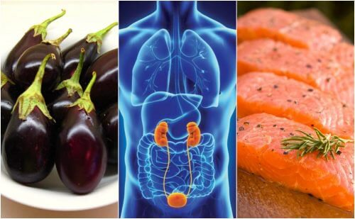 腎臓の健康を促進する7つの食品