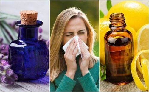 アレルギー症状を抑えてくれるエッセンシャルオイル6種