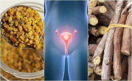 多嚢胞性卵巣症候群と上手く付き合うための5つの自然療法