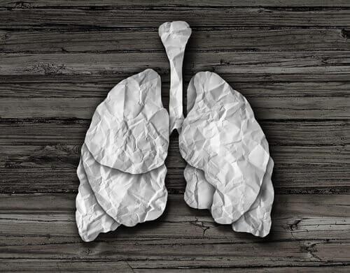 くしゃくしゃの紙で作られた肺