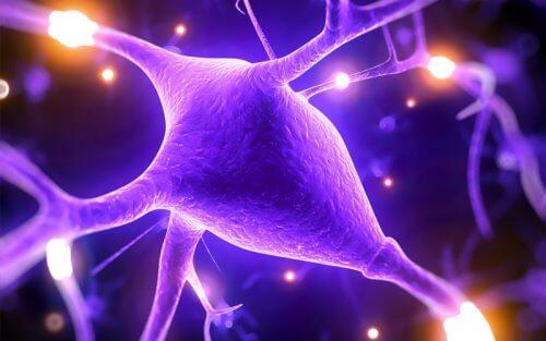 マグネシウムがあなたの知的能力を上げてくれる5つの理由
