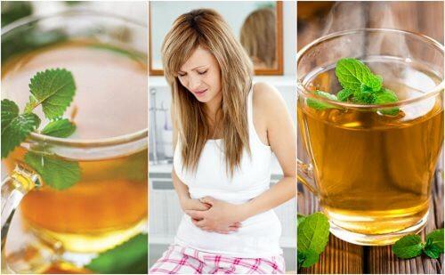 過敏性腸症候群を抑える5つのお茶