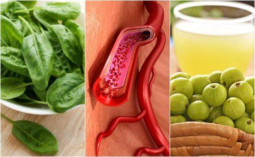 血小板を増やす効果のある食べ物ベスト7