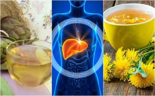 脂肪肝に効く5つのハーブ療法