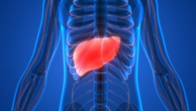肝毒性因子による肝障害の兆候