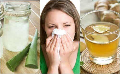アレルギー性鼻炎:5つの自然療法