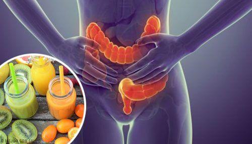 大腸の洗浄効果がある5つの食べ物