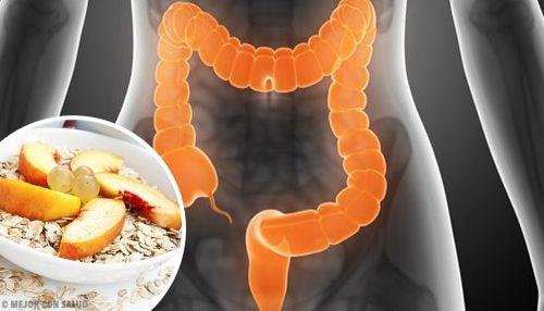 過敏性腸症候群の人が食べるべきものとは?