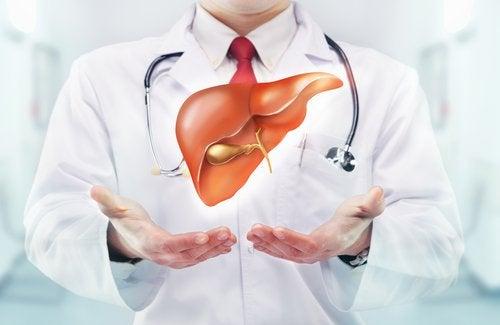 肝臓を温める