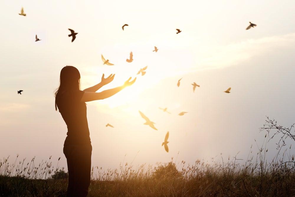 夕日に飛ぶ鳥たちと女性