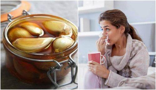 栄養満点!ニンニクのハチミツ漬けで呼吸を楽にする方法