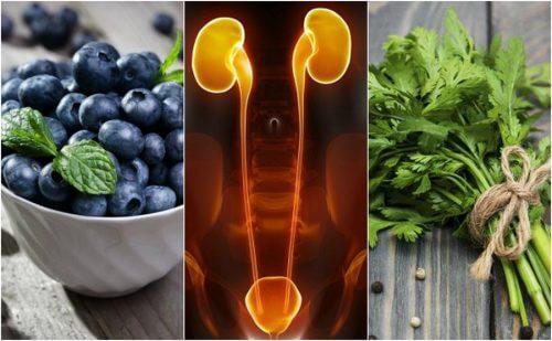 腎臓と膀胱を保護する7つの食品
