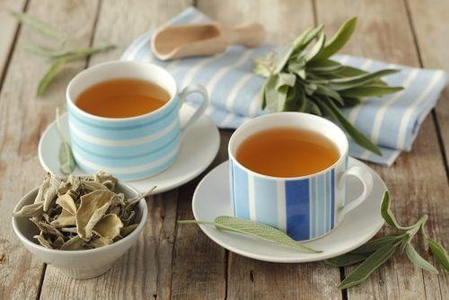 ネトルとセージ茶