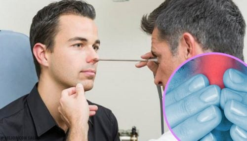 鼻の検査 ビーツのレシピ