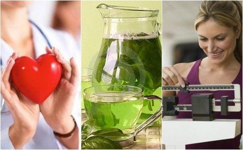 緑茶を飲む6つのメリット