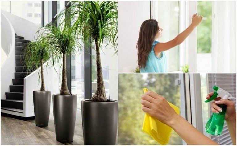 家の空気の質を改善する為に出来る6つのこと