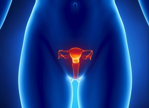 卵巣がんの5つの症状