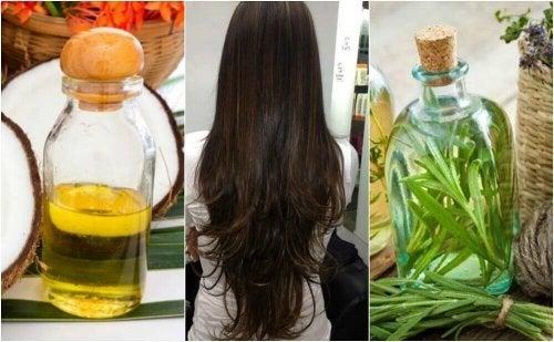 髪の成長を促進する自然療法