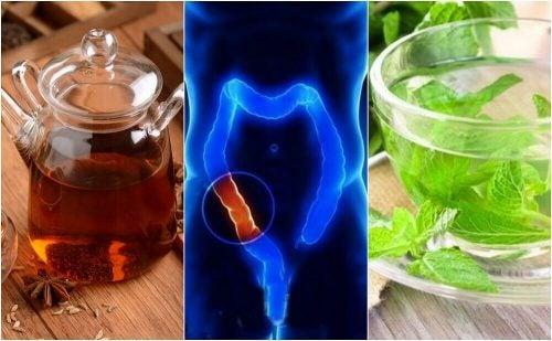 大腸を自然に洗浄する5つの薬用茶