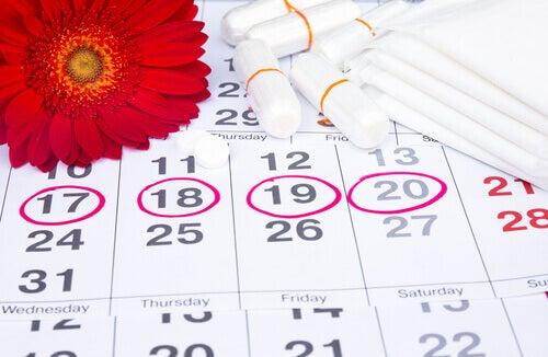 カレンダーとタンポン