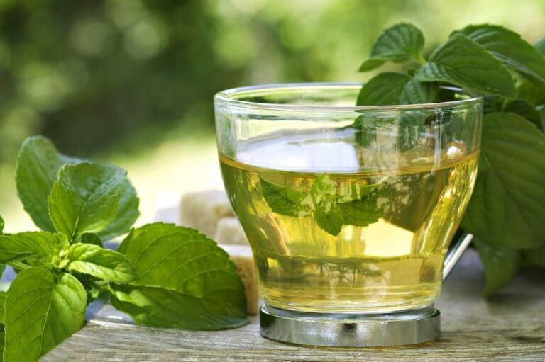 緑茶とミント