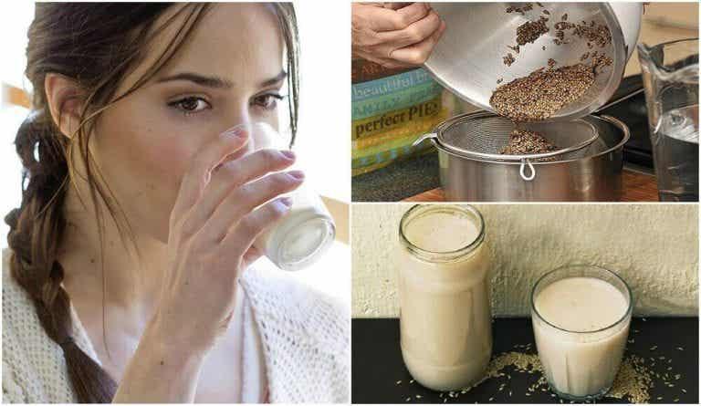 カナリーシードミルクの作り方