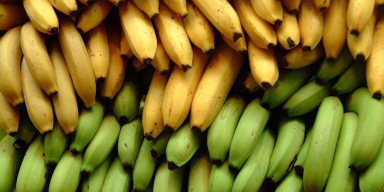 バナナとプランテンが持つ栄養素の3つの主な違い