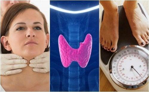 甲状腺機能低下症 かもしれない10のサイン
