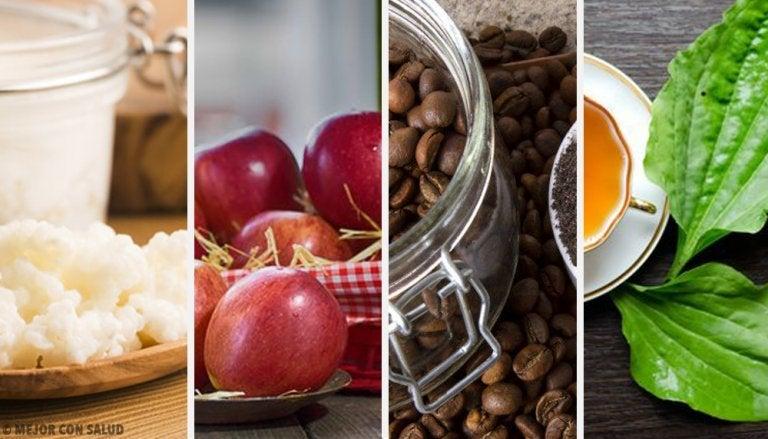 敏感な胃腸に優しい10種類の食材