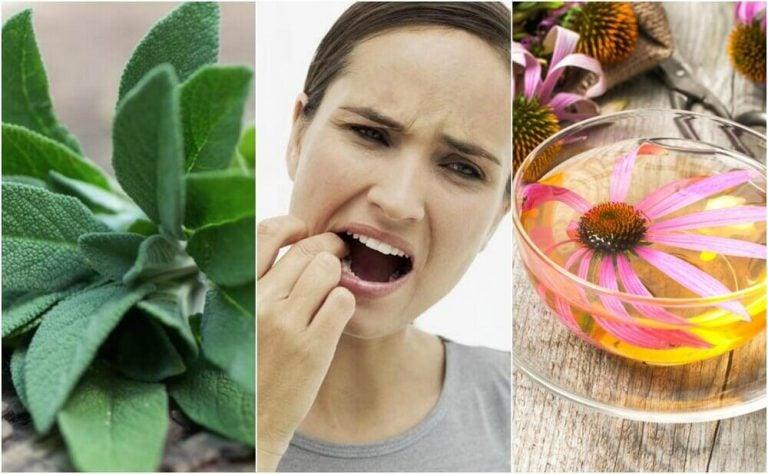 歯肉炎を治す5つの自然療法
