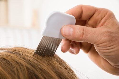 髪を洗う頻度を減らすためにくし