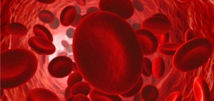 正常な血液の循環を維持する方法