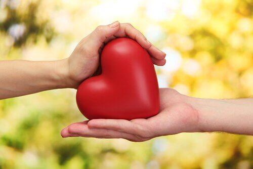 アルファルファ で心疾患のリスクを低下
