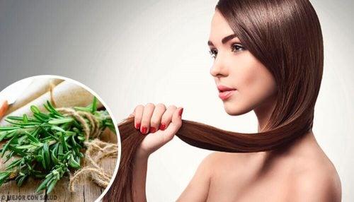 髪の成長を促すハーブとスパイス