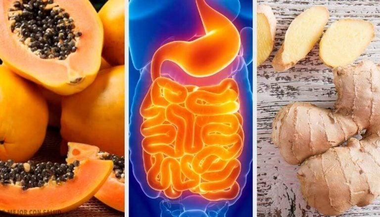 消化を促すフルーツとハーブ