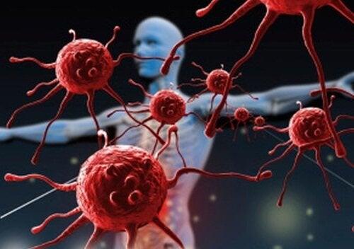 免疫 亜鉛の特性