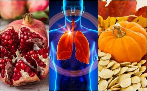 肺機能を高めるサポートをする食品6選