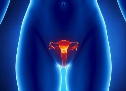 卵巣癌を早期に発見するには