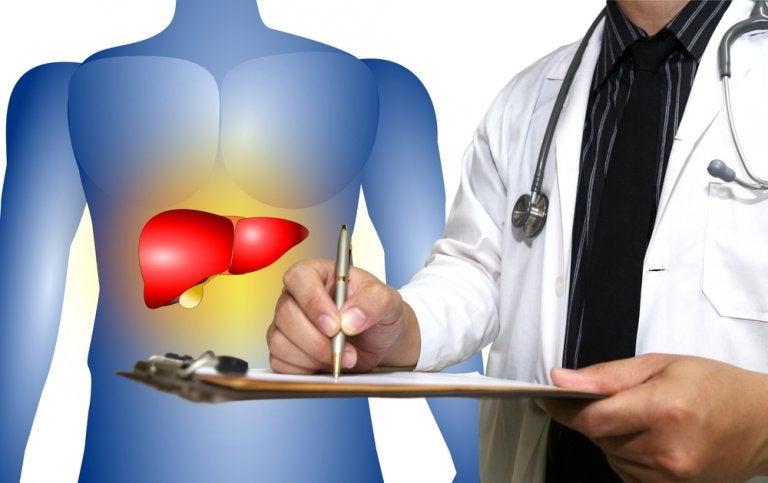 脂肪肝にバツグンの効果を発揮する自然療法