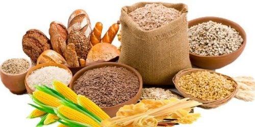 寒い冬におすすめ!減量効果のある4つの食品