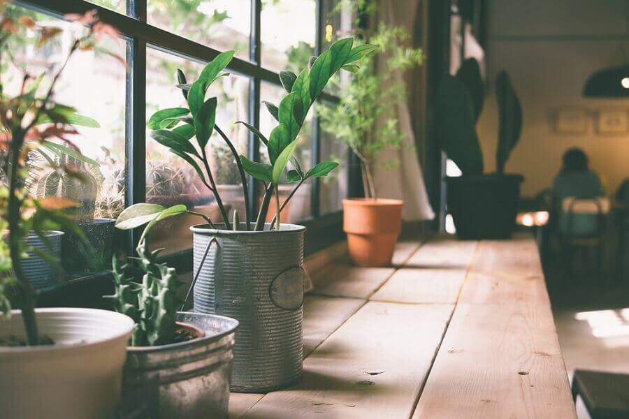 ビンテージ風植木鉢