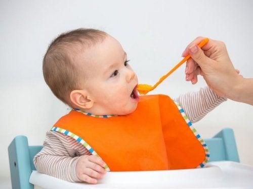 離乳食 フルーツピューレのメリット