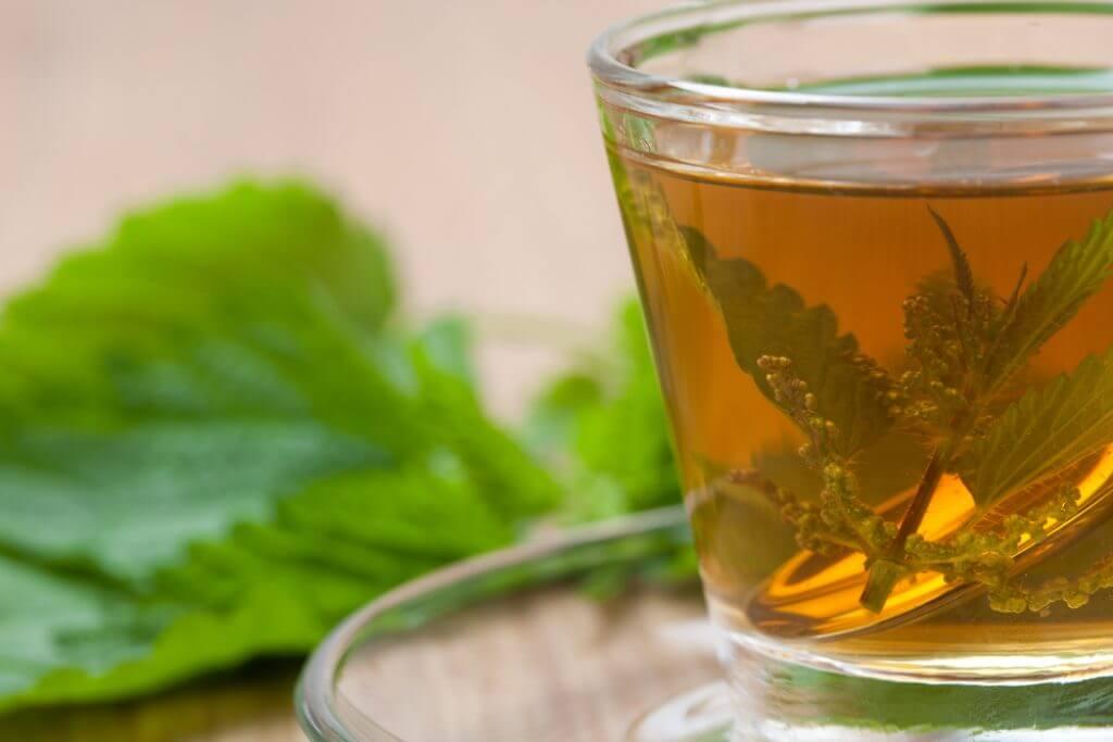 イラクサ茶