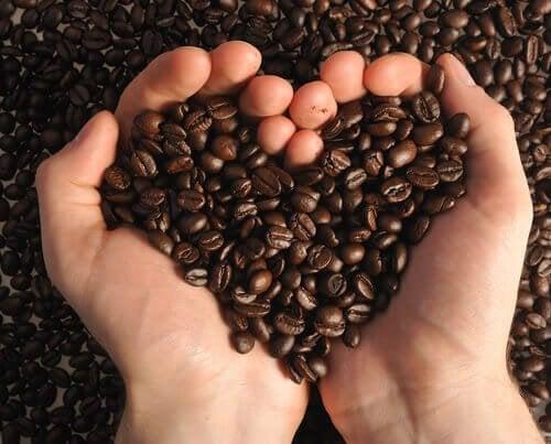 手のひらのコーヒー豆